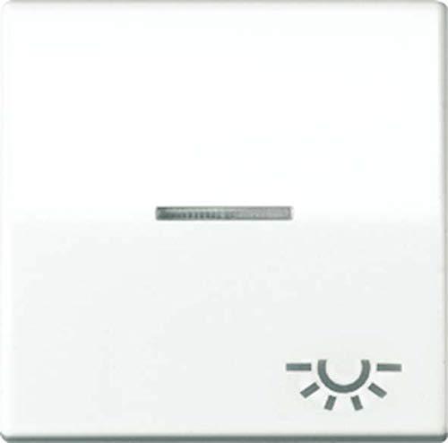 Jung AS591KO5LWW Wippe mit Symbol