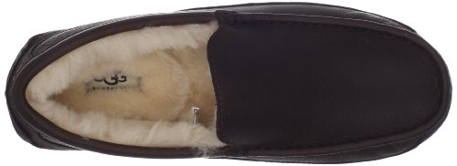 Ugg Ascot 5775, Chaussons homme - Ctea