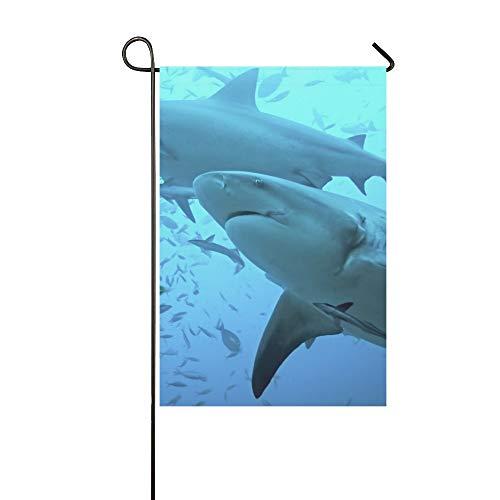 Atoll Licht (JOCHUAN Wohnkultur Bullenhai Carcharhinus Leucas Bega Lagune Garten Flaghouse Yard Flaggarden Yard Decorationsseasonal Willkommen Outdoor Flagge 12X18 Zoll)
