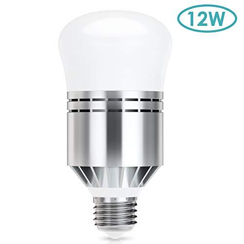 Lampadine Con Sensore Crepuscolare E27 12W Lampadine Bianco Freddo 6000K Automatico On/Off Per Garage Corridoio Veranda [Classe Di Efficienza Energetica A++]