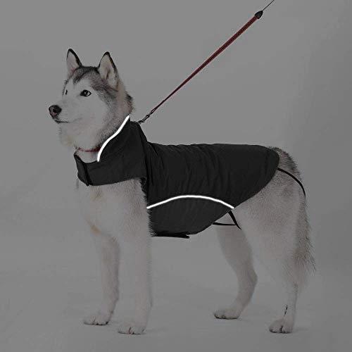 Zoom IMG-1 bwiv cappotto invernale per cani
