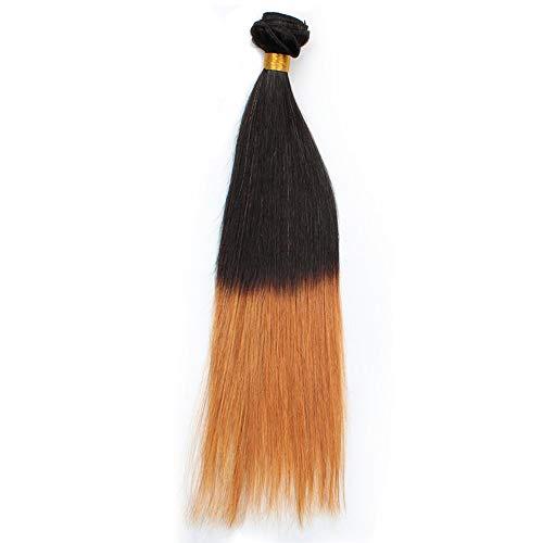 FELICILII Menschliches glattes Haar Ombre Remy, Ombre-Haar-Verlängerungs-Schuss-Ton-Farbe (Farbe : Blonde, Size : 12 inch) (Volle Spitze Menschliches Haar Verlängerung)