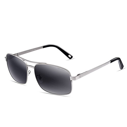 Moderne Himmel Sonnenbrille Edelstahl-Rahmen polarisierte Sonnenbrille TAC Anti-UV männliche graue Linse (Farbe : Silver Frame)
