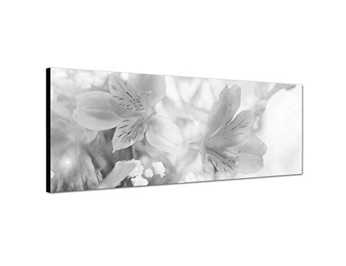 Keilrahmenbild Panoramabild SCHWARZ / WEISS 150x50cm Blumen Blüten Farbfilter abstrakt Licht