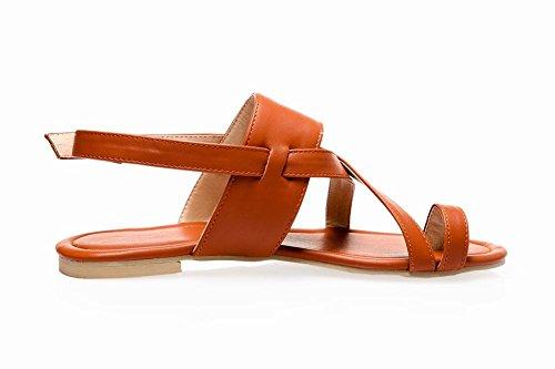 MissSaSa Damen bequem und simpel flach Zehentrenner slingback open-toe Schnalle Sandalen Braun