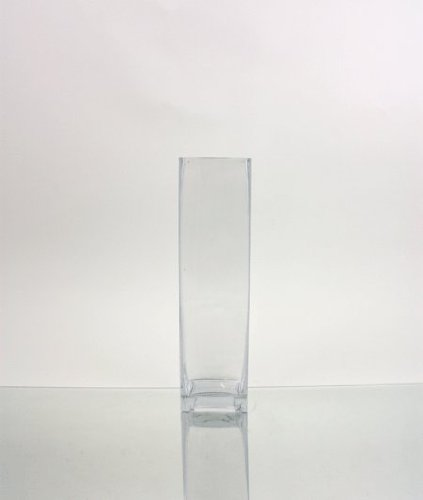 WGV transparent Bud Block Glas Vase, quadratisch, 3von 12Zoll