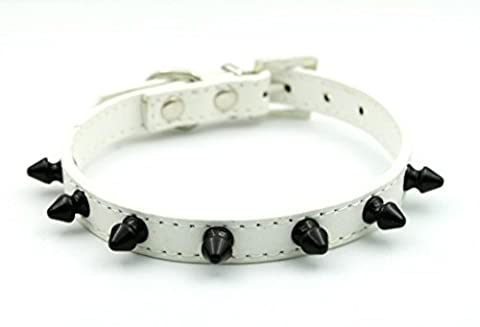 Namsan White Leather Cat / Puppy Collar with Spikes