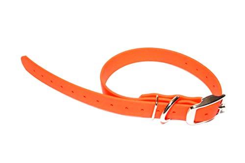 Regal Dog Products Hundehalsband, wasserdicht, für kleine/mittelgroße/große Hunde, One Size Fits All/Cut to Fit (15