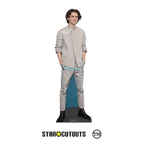 Star Cutouts Ltd- Star Cutouts CS847 Timothee Hal Chalamet Estrella Actor Americana Mini Altura 90 cm Ancho 29 cm, Multicolor