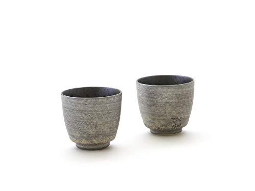 Miyazaki - Sake Becher Silber 2er Set aus japanischem Porzellan der Geschirr-Serie Shusetsu. 45 ml. Hergestellt in Dem berühmten Arita, Japan Sake-becher-set