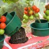 garden-growpot-growbag-watering-pot-set-of-6