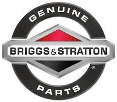Briggs Stratton Carb (Briggs & Stratton Vergasermotor für Rasenmäher, Teilnummer 791886)