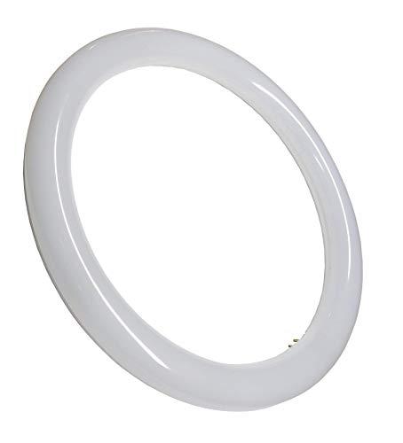 (LA) Tubo LED Circular G10, 18W, Blanco frio 6500K, 300 mm. STANDARD -1800 lumenes reales certificados - Venta desde ESPAÑA- Envio gratis