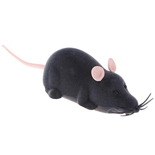 Broadroot télécommande RC Rat souris jouet pour chat Flocage cas de rotation jouet souris