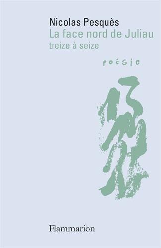 La face nord de Juliau : Treize à seize par Nicolas Pesquès