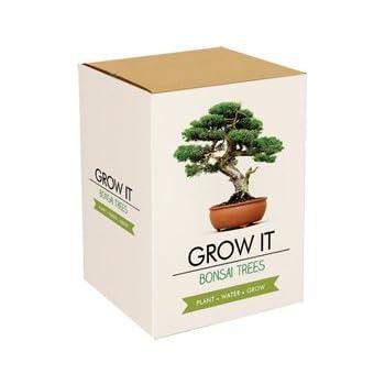 plant theatre bonsai trio kit garten. Black Bedroom Furniture Sets. Home Design Ideas