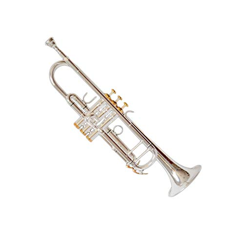 Haoyushangmao Leistungsniveau High-End-Profi-Standard-Trompete, geeignet für Anfänger, Solo- und Band-Performances, Tonart #A (BB), lackiertes Silbermessingmaterial, schöner Ton ( Color : Silver )