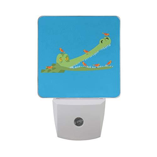 DFISKK Nachtlicht Set of 2 Cartoon Crocodile in Water Little Bird Clean Alligator Tooth Symbiotic Relationship On Blue Auto Sensor LED Dusk to Dawn Night Light Plug in Indoor for Adults