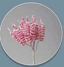 Confezione 72 pezzi-fiori, Bomboniera fiore SPIRALE, x segnaposto, composizione confetti. CK2122 (ROSA)