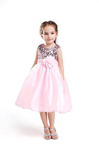 ELSA & ANNA® Top Qualität Mädchen Prinzessin Kleid Hochzeits Partei Kleid Verrücktes Kleider Brautjungfer Kleid Weihnachtsfest Kleid Partei Kostüm Outfit DE-PNK-PDS03 (3-4 Jahre, PDPNK03)