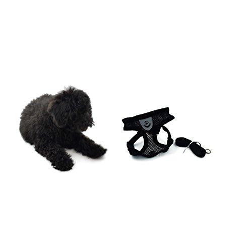Schutz Thorax, Haustier Brustgurt, Hund Weste Typ Leine, Mesh Brustgeschirr, schwarz, klein