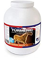 Equine America Turmeric 3kg by Equine America