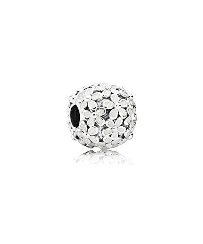 pandora-women-9-k-375-silver-accessories