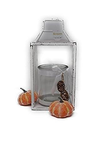 Formano Windlicht, 45 cm, weiß, mit Kürbis Herbstdeco bundel