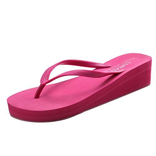 ✿✿Eaylis Damen Sandalen Einfarbiger Einfacher Keil Mit Flipflops Sommer Strand Schuhe Hausschuhe Stilvoll Und Elegant