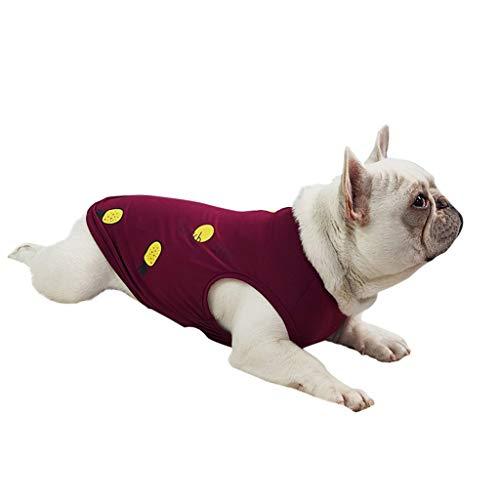 LOSVIP Frühling Sommer Hunde Katze kleidet 2019,Ananas-Muster-Hundekostüm-Haustier kleidet Weste(Rot,S)
