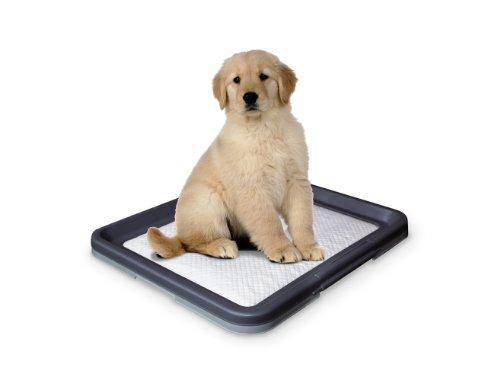 Artikelbild: Nobby 67151 Doggy Trainer L - 62.5 x 48 x 3.8 cm
