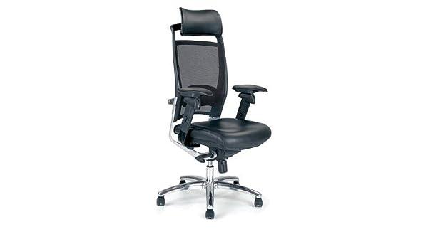 Chellgrove DPA New Fulkrum Ergonomic Mesh Office Chair