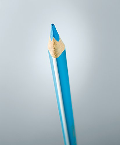 comprare on line STABILO Trio Maxi matita colorata colori assortiti con Temperino - Astuccio da 24 prezzo