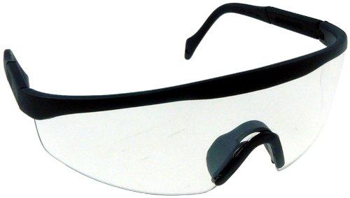 Oregon Schutzbrille
