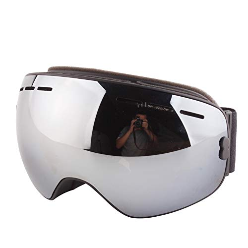 YXZN Ski Goggles Double Anti Nebel Große Kugelförmige Outdoor-Sportgeräte Erwachsene Männer Und Frauen,Silver,17.3X10.4CM