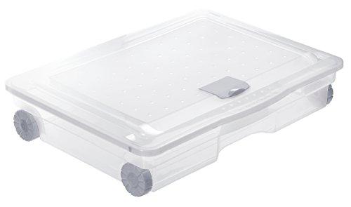 Rotho Cargo Unterbettbox 60 l, Kunststoff (PP), transparent, 60 Liter  (80 x 60 x 18 cm)