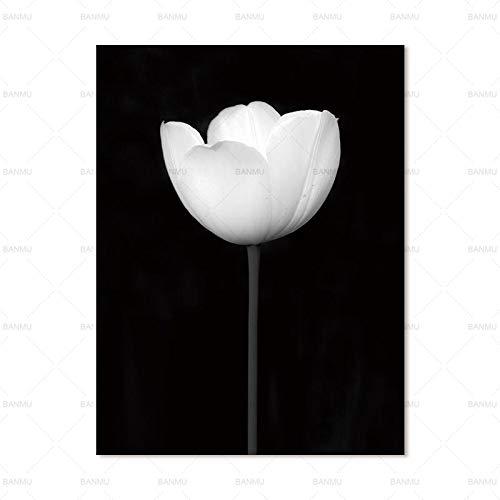 zxddzl Quadro su Tela Pittura Moderna Decorazione Domestica Stampa Floreale Foto Parete Soggiorno Decorazione Arte 3 50 * 70