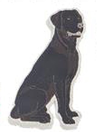 Black Lab Magnetic Screen Door Saver - By Ganz by Ganz