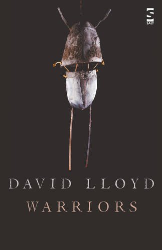 Warriors (Salt Modern Poets) por David Lloyd