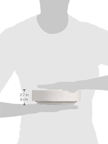 Mical - Platos de plástico - 22 cm - 100 unidades