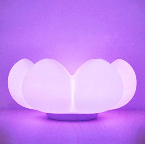 Qzz Lampe De Nuit 3D Fleurs Char...