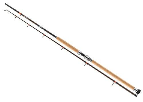 Cormoran - Big Cat Mega Lifter 2tlg. - 20-600g - 3.00m