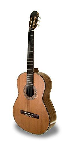 APC 10 KOA C Konzert-Gitarren