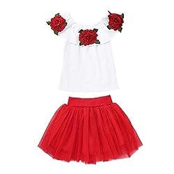 Yanhoo Baby Kleidung Set Baby Mädchen Kleider Baumwolle Prinzessin Kostüm Neugeborene Polka Dots Rock Tutu Kleid Baby Mädchen Schulterfrei Rose Stickerei Tops + Solide Tüllröcke Outfits