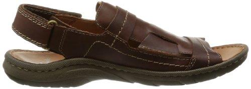 Clarks shoes Marron