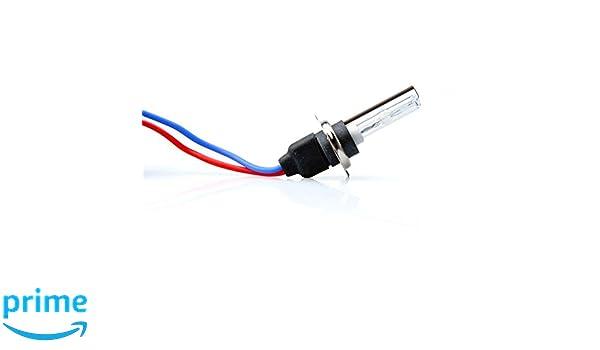 Tech ZMPH76/Lampe Basic HID H7/6000/K Set von 2