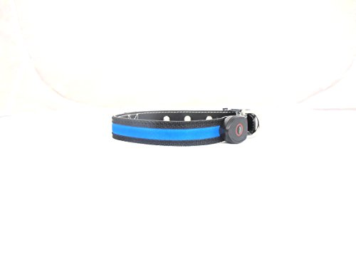 NEW-Super-Bright-LED-Dog-safety-Collar-Rechargeable-Via-USB-Quick-Charge-Time-Just-40-Minutes-No-Batteries-Required-Available-in-3-Colours-Medium-Size-Fits-Neck-Size-45-55cm-Blue