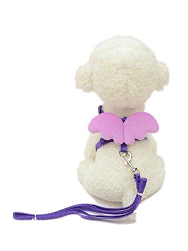 collier-chien-laisses-harnais-ange-mignon-nylon-ajustable-120cm-gilet-harnais-pour-chiens-s-cou20-32