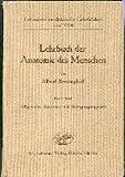 Lehrbuch der Anatomie des Menschen 1. Band Allgemeine Anatomie und Bewegungsapparat Lehmanns medizinische Lehrbücher Band XVII