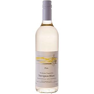Pflzer-Weiwein-Sauvignon-blanc-trocken-1-x-075-L-Flasche-direkt-vom-Winzer